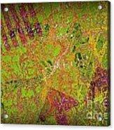 Grunge Background 4 Acrylic Print by Carlos Caetano