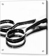 Hair Shears Acrylic Print by Blink Images