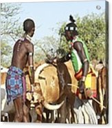 Hamer Tribe Jumping Of The Bulls Ceremony Acrylic Print by Photostock-israel