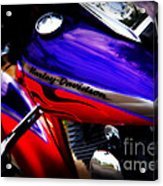 Harley Addiction Acrylic Print by Susanne Van Hulst