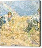 Harvester Acrylic Print by LP Smythe