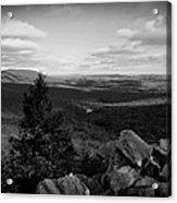 Hawk Mountain Sanctuary Bw Acrylic Print by David Dehner