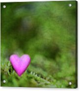 Heart In Moss Acrylic Print by Alexandre Fundone