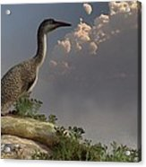Hesperornis By The Sea Acrylic Print by Daniel Eskridge