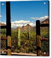 High Chaparral Old Tuscon Arizona  Acrylic Print by Susanne Van Hulst
