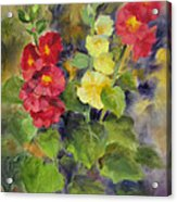 Hollyhocks Acrylic Print by Karin  Leonard