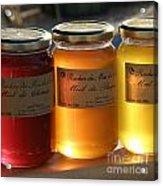 Honey Acrylic Print by Lainie Wrightson