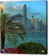 Hong Kong Mornings Acrylic Print by Bibhash Chaudhuri