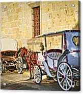 Horse Drawn Carriages In Guadalajara Acrylic Print by Elena Elisseeva