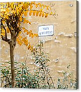 Il Piazza Malcontenti Acrylic Print by Michael Flood