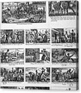 Illustrations Of The Antislavery Acrylic Print by Everett