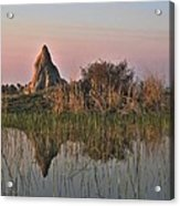 In A Mirror Acrylic Print by William Fields
