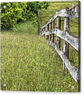 Into The Distance  Acrylic Print by JC Findley