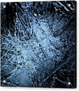 jammer Frozen Cosmos Acrylic Print by First Star Art