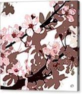 Japanese Blossom  Acrylic Print by Sarah O Toole