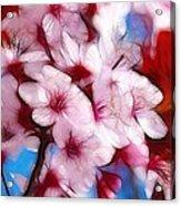Japanese Flower Acrylic Print by Stefan Kuhn