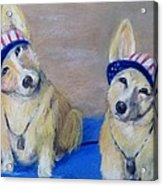 Kipper And Tristan Acrylic Print by Trudy Morris