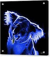 Koala Pop Art - Blue Acrylic Print by James Ahn