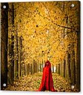 Lady In Red - 5 Acrylic Print by Okan YILMAZ