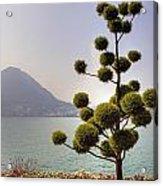 Lake Lugano - Monte Salvatore Acrylic Print by Joana Kruse