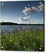 Lake View Acrylic Print by Gary Eason