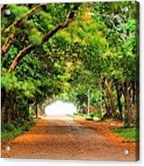 Landscape Painting Showing Road  Acrylic Print by Parinya Kraivuttinun
