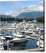Large Marina In Vancouver Bc Canada. Acrylic Print by Gino Rigucci