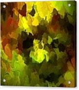 Late Summer Nature Abstract Acrylic Print by David Lane