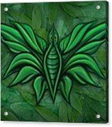 Leafy Bug Acrylic Print by David Kyte