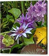 Lilies No. 39 Acrylic Print by Anne Klar