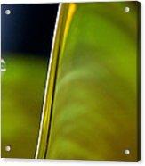 Lime Abstract Acrylic Print by Dana Kern