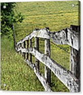 Lines Acrylic Print by JC Findley