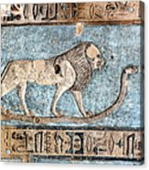 Lion At Dendera, Egypt Acrylic Print by Joe & Clair Carnegie / Libyan Soup