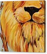 Lion Of Judah Acrylic Print by Diana Kaye Obe