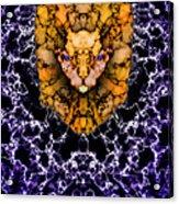 Lion's Roar Acrylic Print by Christopher Gaston