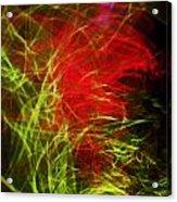 Liquid Saphire 8 Acrylic Print by Cyryn Fyrcyd
