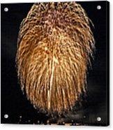 Lopez Island Fireworks 1 Acrylic Print by David Salter