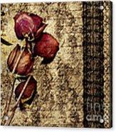Love Letter Acrylic Print by VIAINA Visual Artist