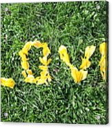 Love Spelt Out With Flowers Acrylic Print by G Fletcher