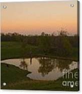 Loving The Sunset Acrylic Print by Cris Hayes