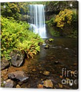 Lower South Falls Acrylic Print by Adam Jewell