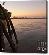 Miami And Mangroves Acrylic Print by Matt Tilghman