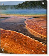 Middle Hot Springs Yellowstone Acrylic Print by Garry Gay