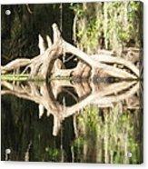 Mirrorknot Acrylic Print by Warren Clark