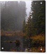 Misty Solitude Acrylic Print by Mike Reid
