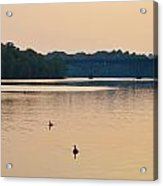 Morning Along The Schuylkill River Acrylic Print by Bill Cannon