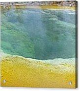 Morning Glory Pool, Yellowstone Acrylic Print by Tony Craddock