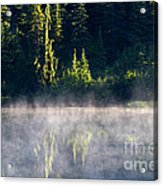 Morning Mist Acrylic Print by Mike  Dawson