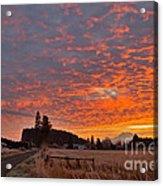 Mount Rainier Dawn Acrylic Print by Sean Griffin