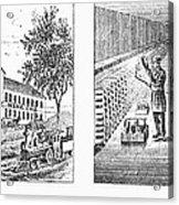 New York: Winery, 1878 Acrylic Print by Granger